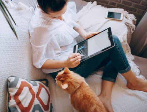 zena-s-mackom-na-krevetu-i-laptopom-u-krilu-trazi-posao-primijenjujuci-pravilo-80-20
